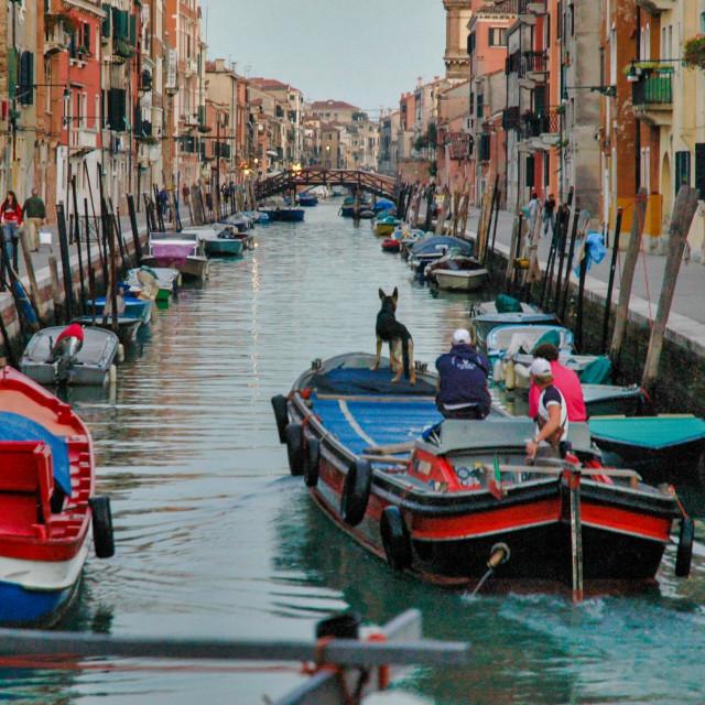 """Rio di San Girolamo #3"" stock image"