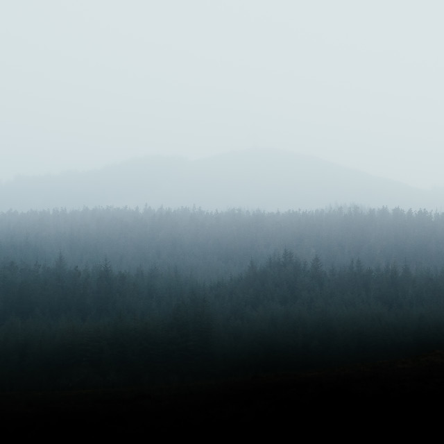 """""""Foggy Hill of Doon"""" stock image"""