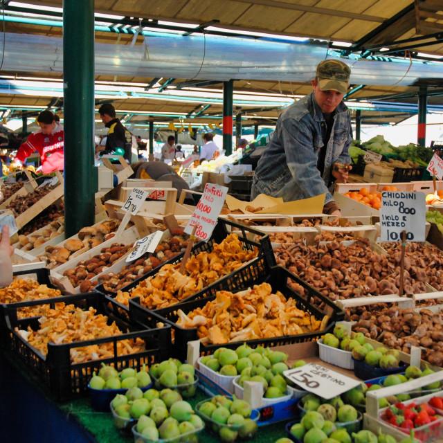 """Mushrooms, Rialto market"" stock image"