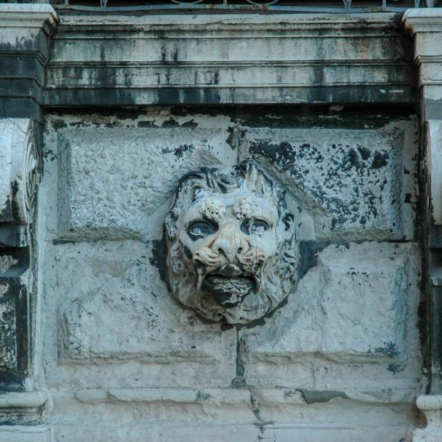 """""""Ca' Rezzonico lion carving"""" stock image"""