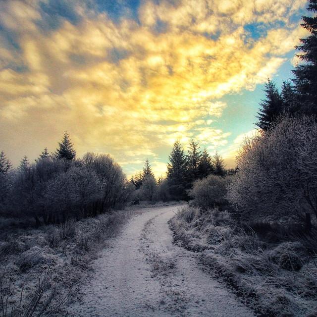 """""""Winter in Boho"""" stock image"""