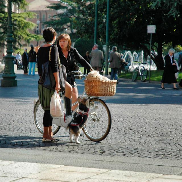 """""""Two ladies of Verona"""" stock image"""