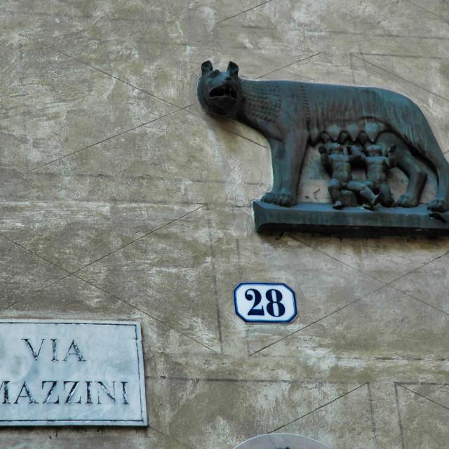 """""""Romulus & Remus relief"""" stock image"""