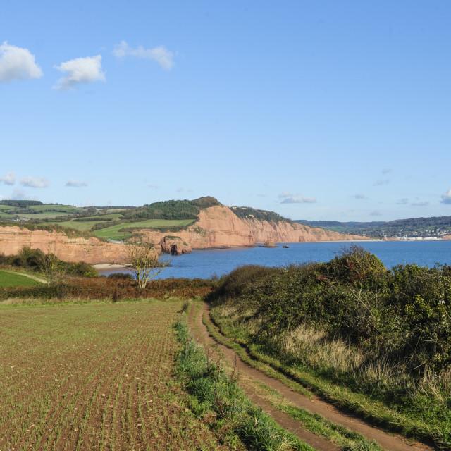 """The East Devon Coastpath near Budleigh Salterton"" stock image"