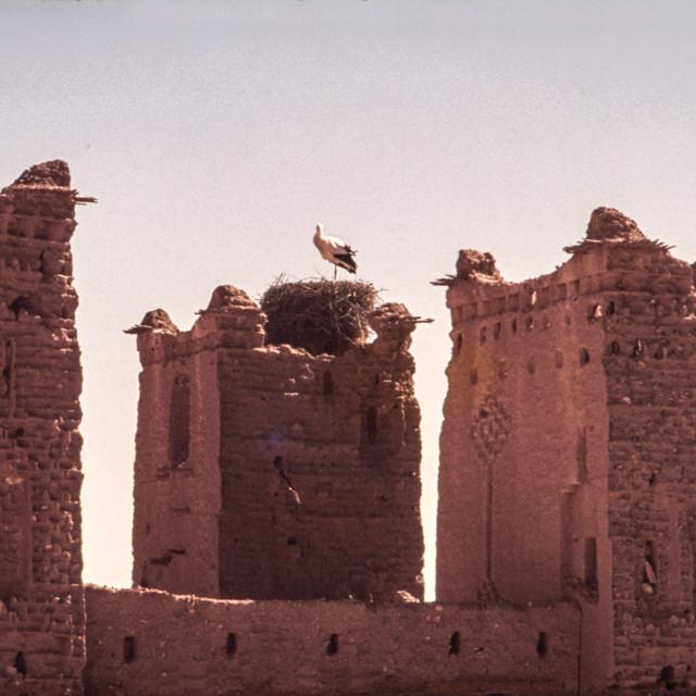 """Fort battlements with stork & nest"" stock image"