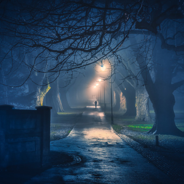 """""""A foggy night from Jesus Green footpath, Cambridge UK."""" stock image"""