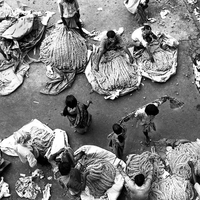 """Flower Market, Kolkata, India"" stock image"