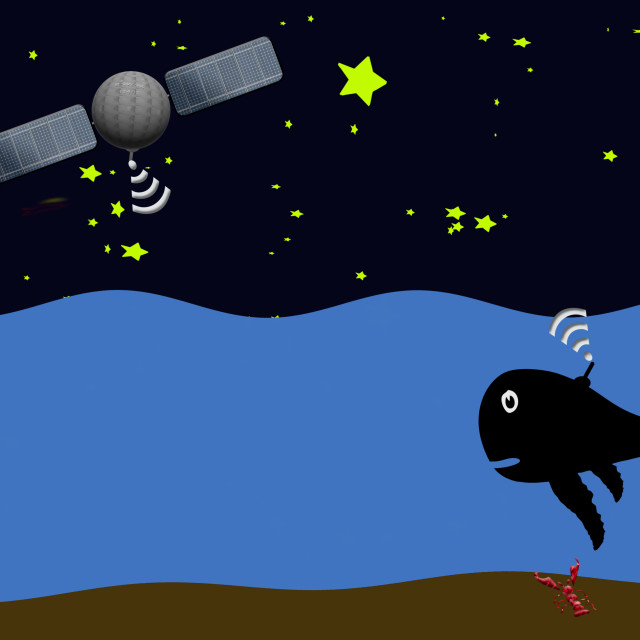 """""""Illustration - satellite location used to track and locate whales. Animation available."""" stock image"""