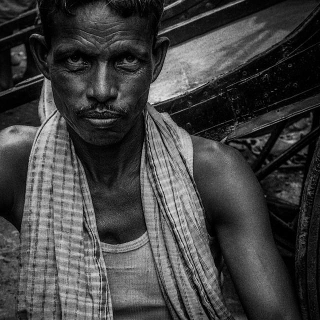 """""""Rickshaw Puller"""" stock image"""