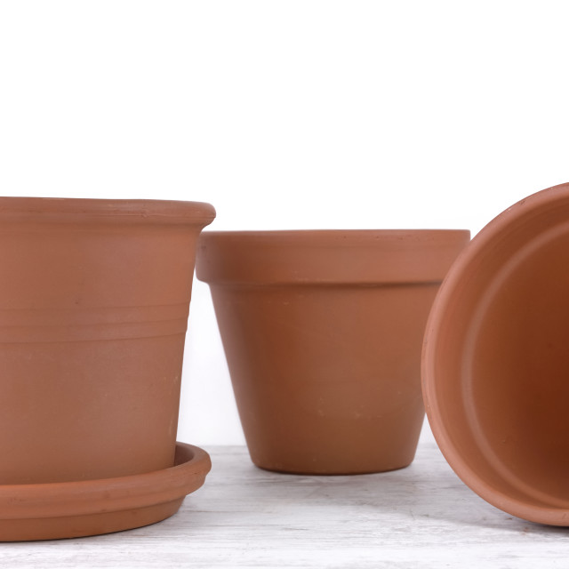 """""""group of terra cotta flower pots empty on a table on white background"""" stock image"""