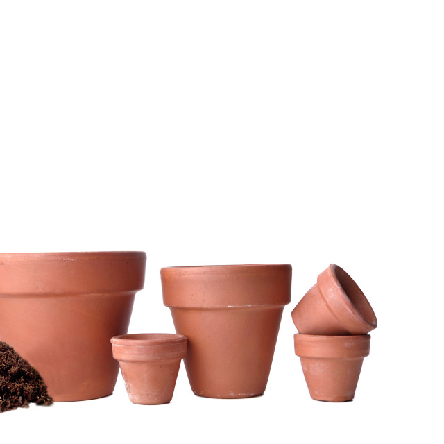 """""""group of terra cotta flower pots empty in panoramic view on white background"""" stock image"""
