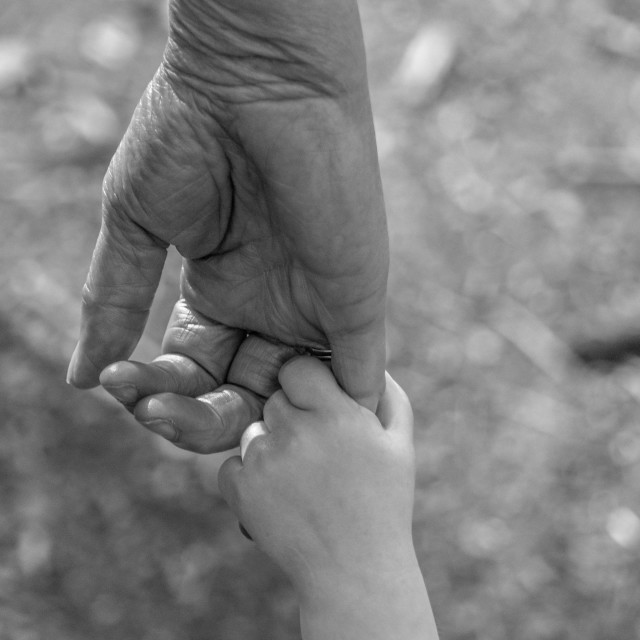 """""""Trusting Hands"""" stock image"""