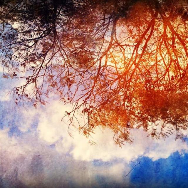 """Upside down dreams."" stock image"