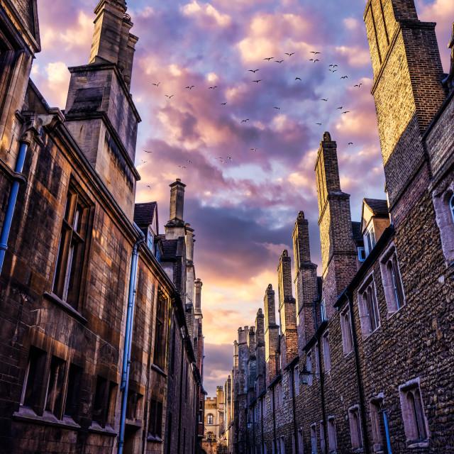 """Golden Hour Sunset from Trinity Lane, Cambridge UK."" stock image"