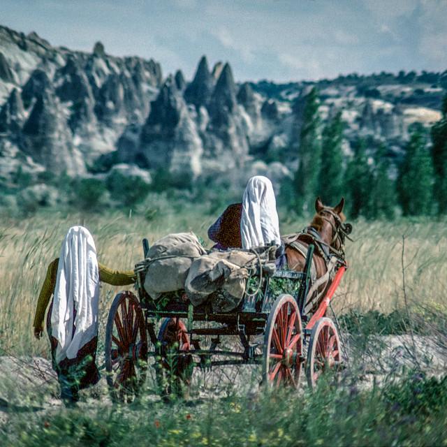 """""""Cappodocian women in farm cart"""" stock image"""