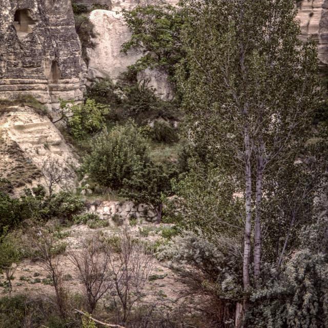 """Farmer beneath cliff dwellings"" stock image"