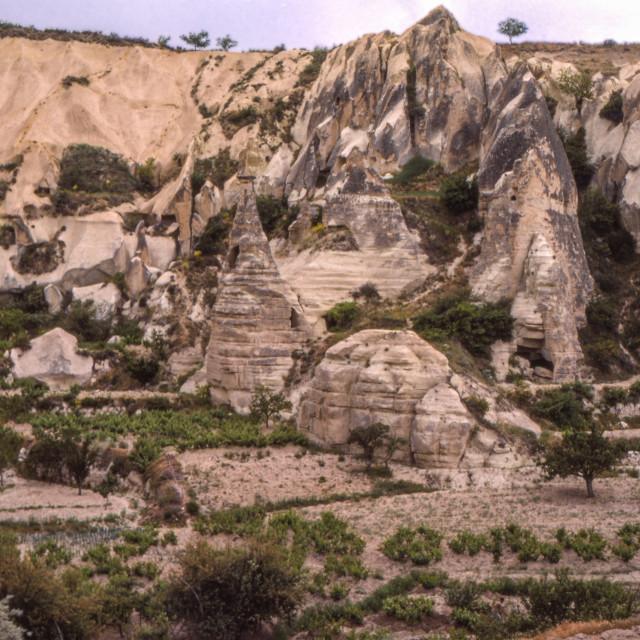 """Eroded rocks & vinyards, Göreme"" stock image"