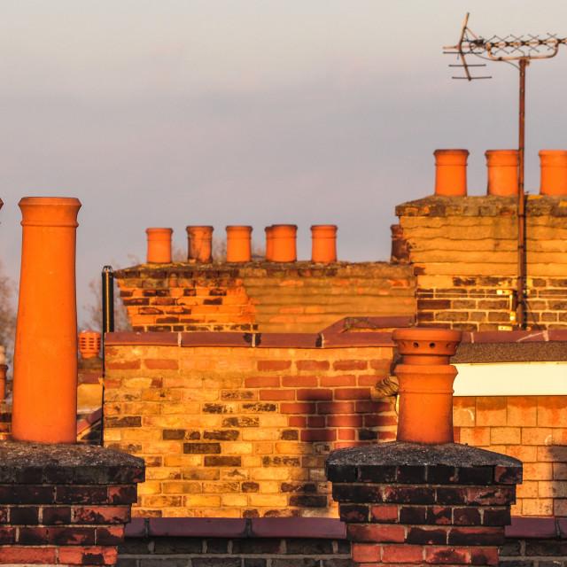 """""""London chimneys in """"golden hour"""" light"""" stock image"""