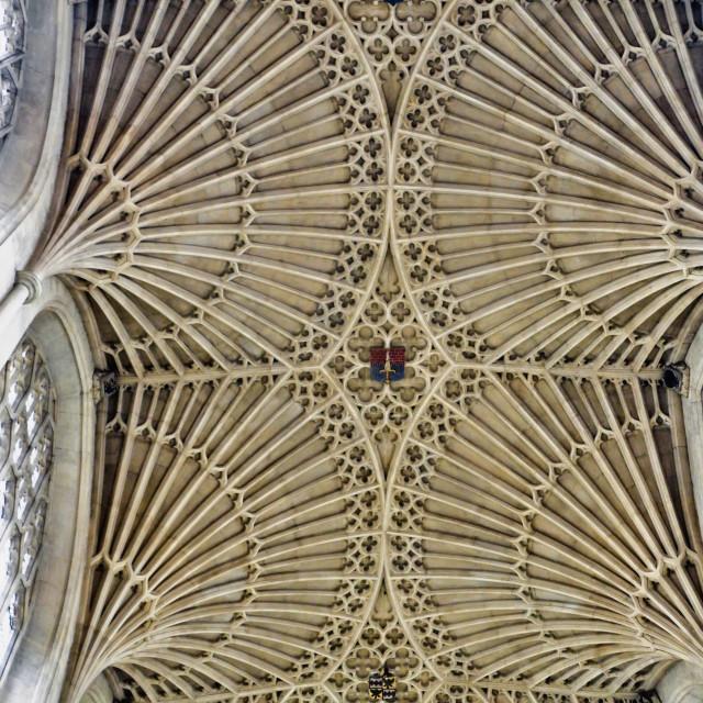 """""""Bath abbey fan vaulting"""" stock image"""