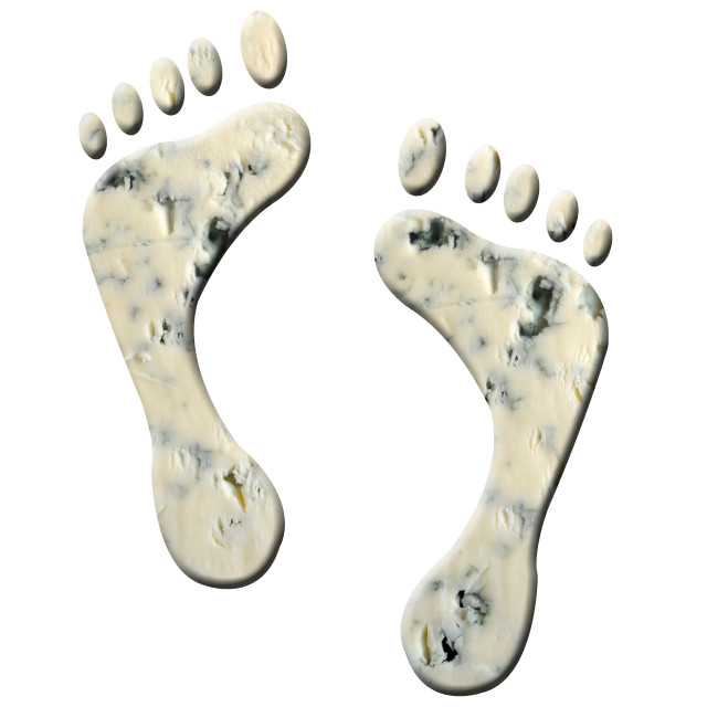 """""""Illustration - Cheesy feet. Animation of the dancing feet available. Studies have shown that the odorous nature of feet can be attributed a number of bacteria with Staphylococci being the main culprit for the smell. It is claimed that malaria carrying"""" stock image"""