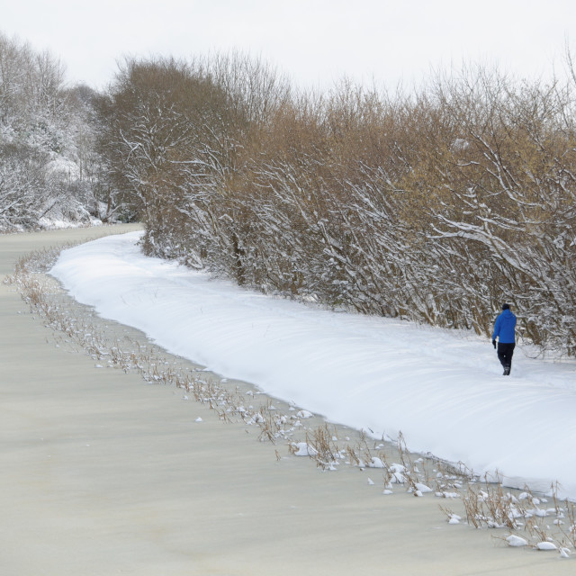 """""""Beast from the East"""" stock image"""
