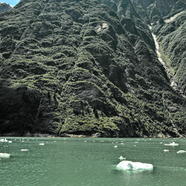 """""""Tracy Arm Fjord with icebergs"""" stock image"""