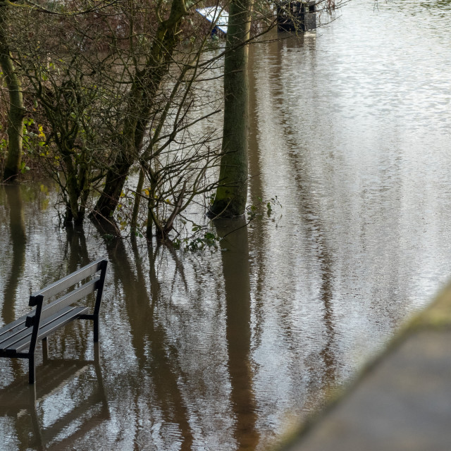 """Flooded Park"" stock image"