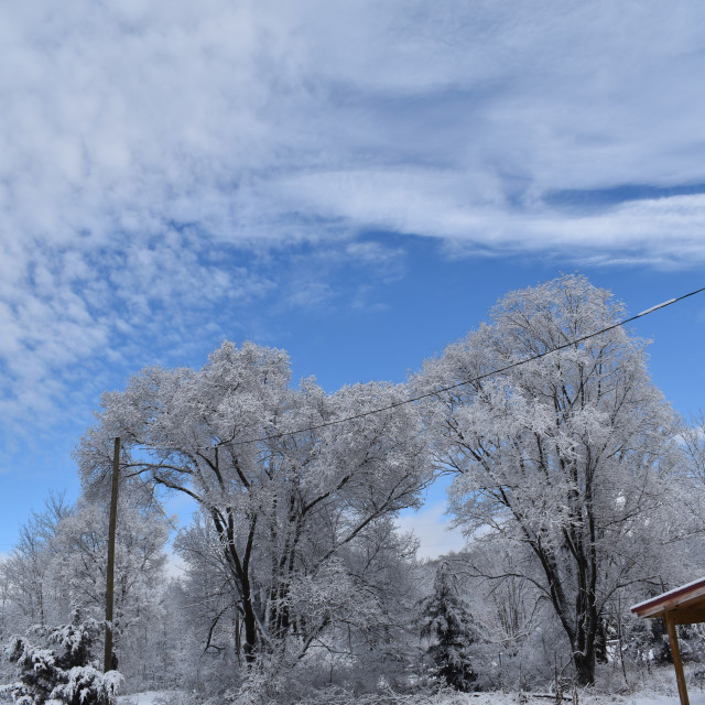 """""""Blue sky after the snow storm"""" stock image"""