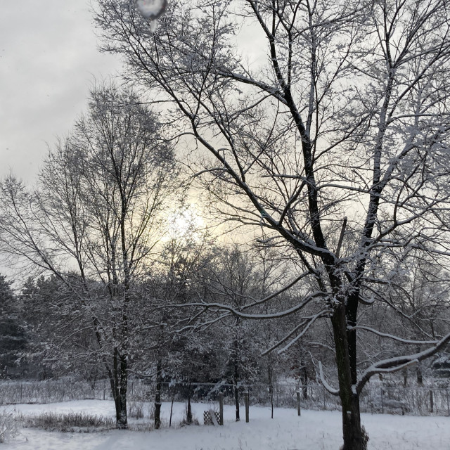 """Snowy sunrise"" stock image"