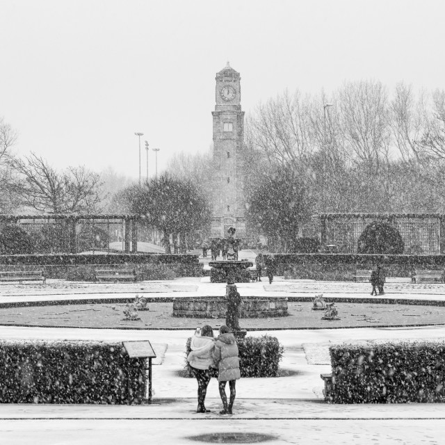 """""""Stanley Park Snow Day"""" stock image"""