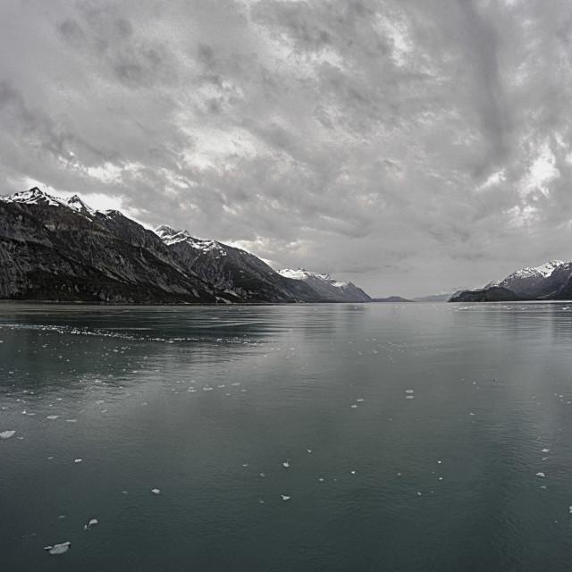 """""""Tarr Inlet, Glacier Bay"""" stock image"""