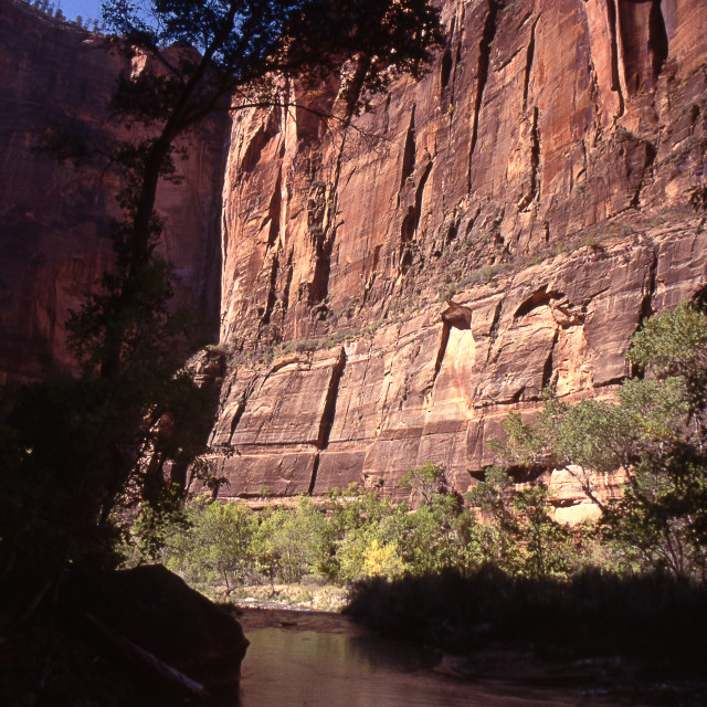 """""""Zion National Park canyon walls & stream"""" stock image"""