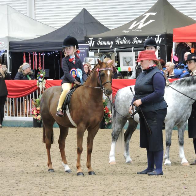 """STARS Riding Club Championships October 2019"" stock image"