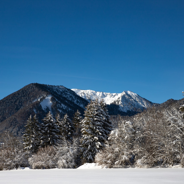 """""""Winter landscape with mountains"""" stock image"""