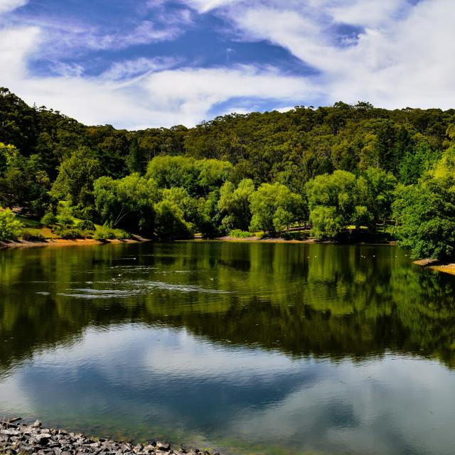 """""""MT Lofty Botanical Gardens"""" stock image"""