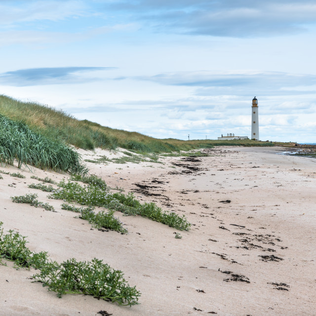 """""""Lighthouse and Beach"""" stock image"""