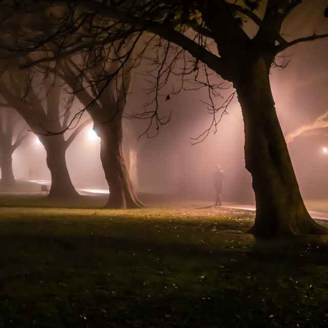 """A foggy night from Jesus Green, Cambridge UK."" stock image"