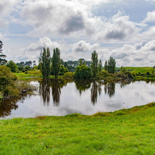 """Overhill Pond, Hobbiton"" stock image"