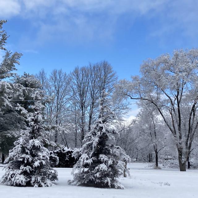 """Let it snow"" stock image"