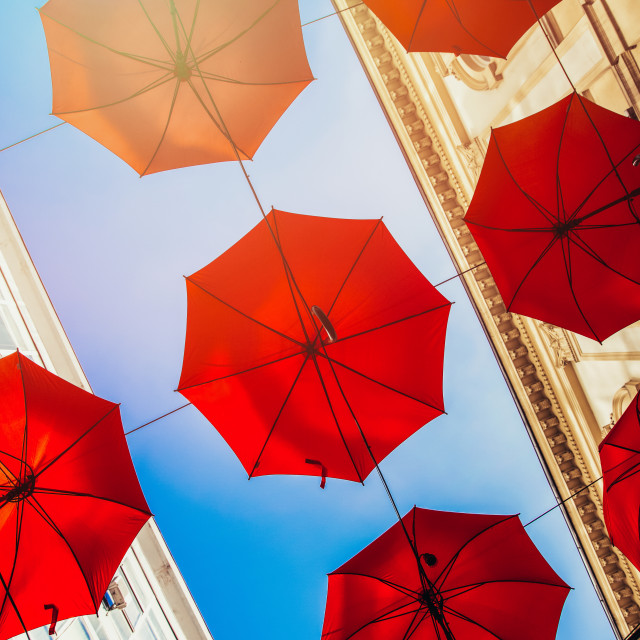 """""""Red umbrellas hanging above the city streets"""" stock image"""