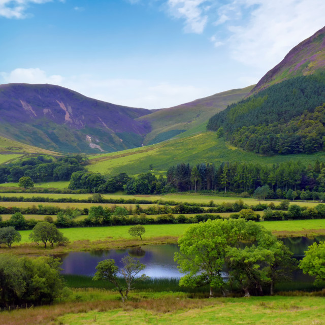 """Loweswater Landscape - Lake District Landscapes"" stock image"