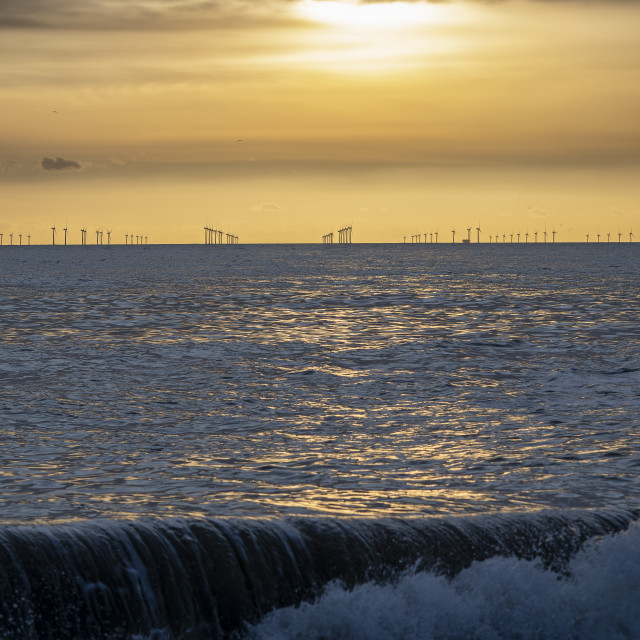 """Natural energy in golden sunlight at dusk"" stock image"