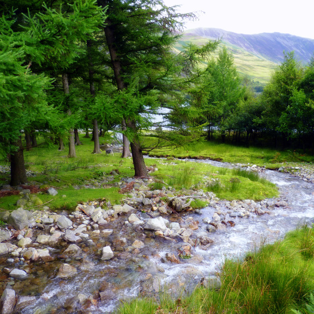 """Lake District Stream winding in to Buttermere"" stock image"