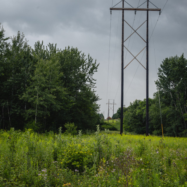 """""""high line power lines cutting through a forested country area"""" stock image"""