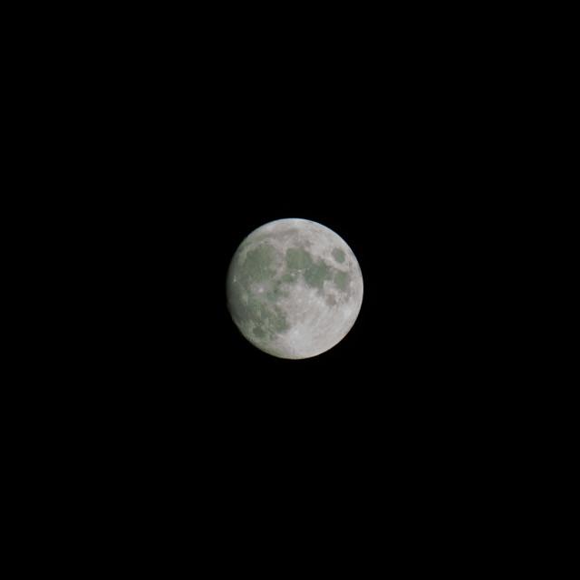 """full moon in the night sky"" stock image"