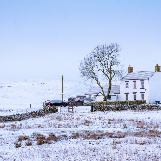 """""""Upper Teesdale farmhouse"""" stock image"""