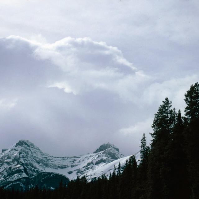 """Canadian Rockies"" stock image"