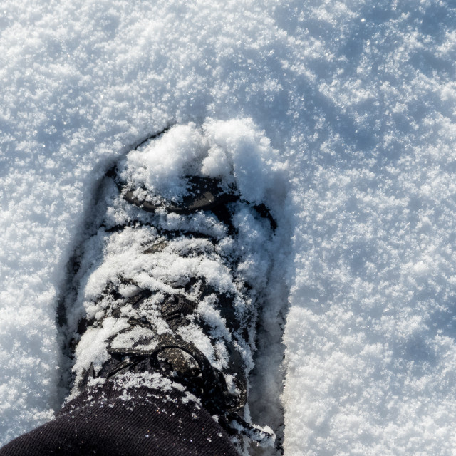 """""""Shoe in the snow"""" stock image"""