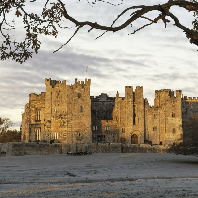 """""""Raby Castle County Durham"""" stock image"""
