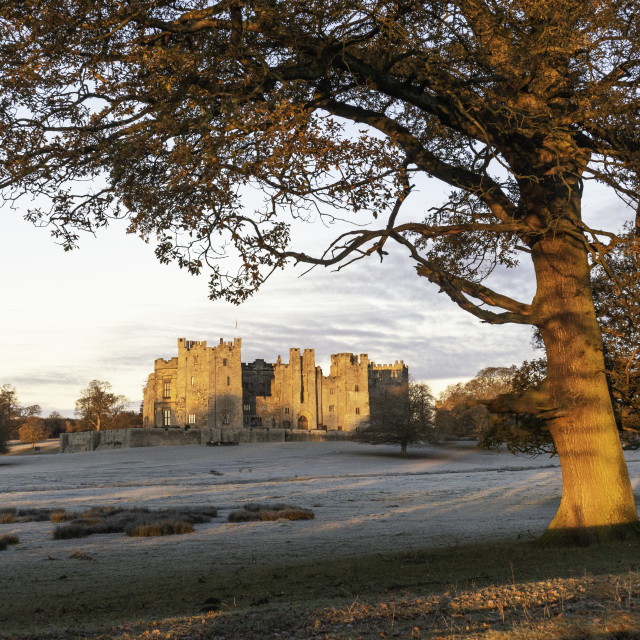 """Frosty autumn sunrise at Raby Castle"" stock image"